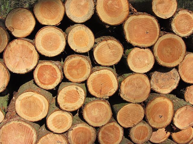 Une charpente traditionnelle en bois pour la beauté de votre maison